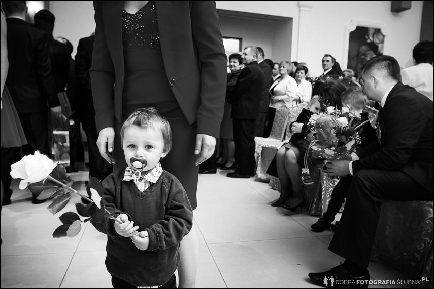 chłopiec z różą zdjęcia ślubne